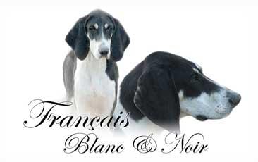 Francais Noir et Blanc