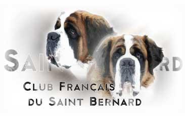 Boutique du club du saint bernard