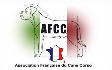 Boutique du club du Cane Corso