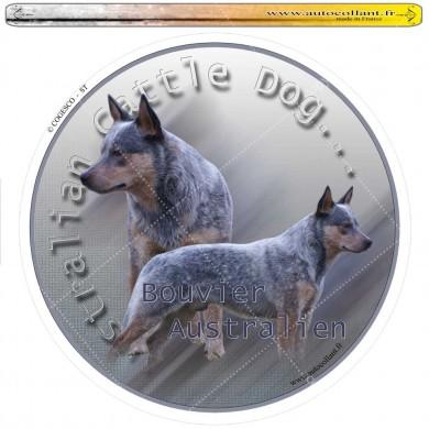 Autocollant australian cattle dog 01 circulaire