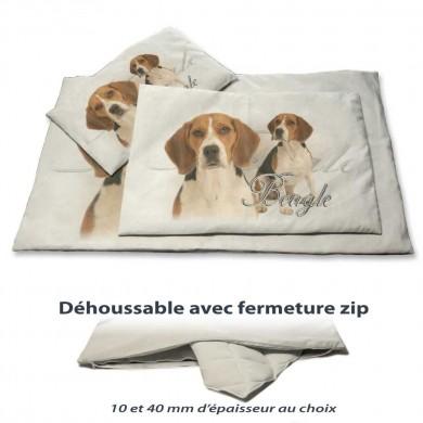 Coussin chien avec un beagle