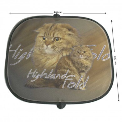 Pare soleil Chat highland fold
