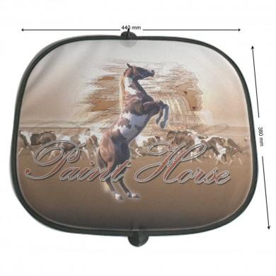 Pare soleil Cheval paint horse