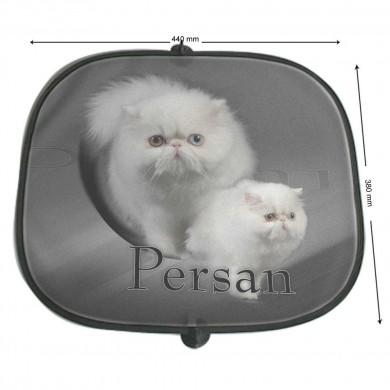 Pare soleil Chat persan blanc