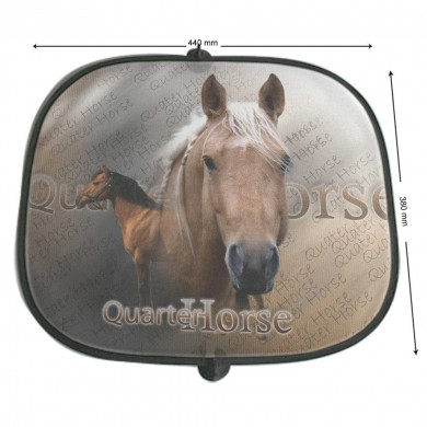 Pare soleil Cheval quater horse