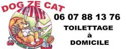 publicité autocollante pour voiture d'une activité de taxi pour chiens et chats