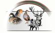 articles et accessoires pour le monde de la chasse