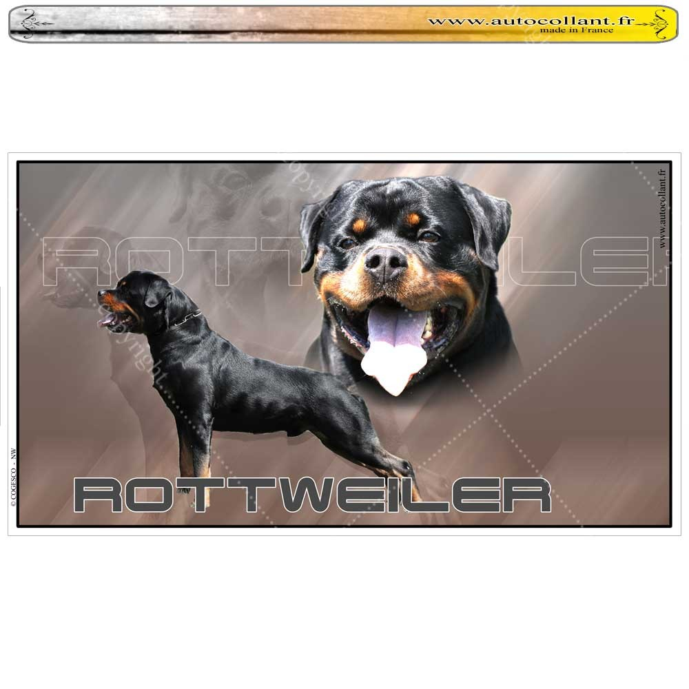 Stickers autocollant rottweiler