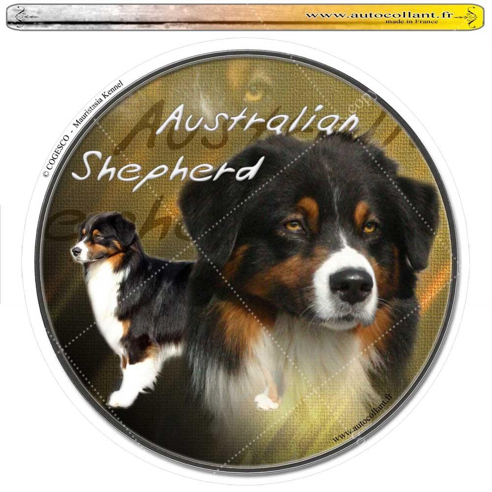 Autocollant australian shepherd tricolor circulaire
