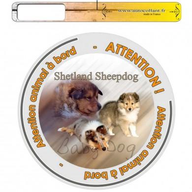 Autocollant Chien à bord de  shetland sheepdog baby dog