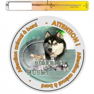 Autocollant Chien à bord de siberian husky