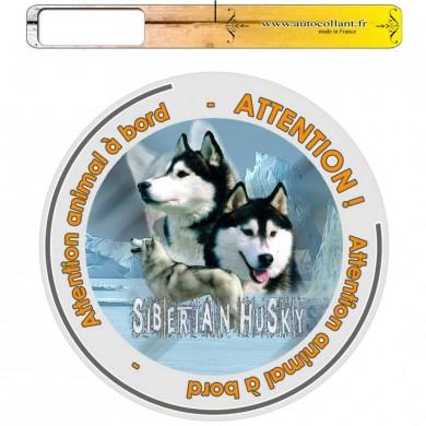 Autocollant Chien à bord de siberian husky oumiaks