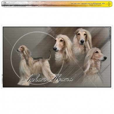Stickers autocollant afghan hound