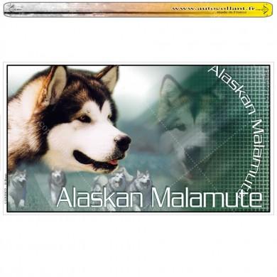 Stickers autocollant alaskan malamute 02