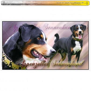 Stickers autocollant appenzeller sennenhund