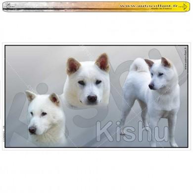 Stickers autocollant kishu