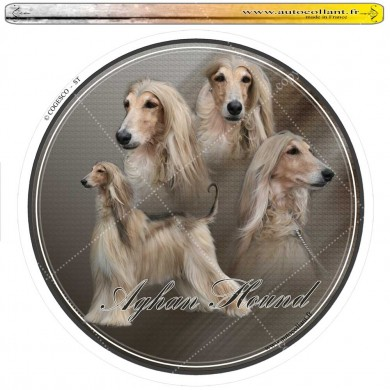 Autocollant afghan hound circulaire