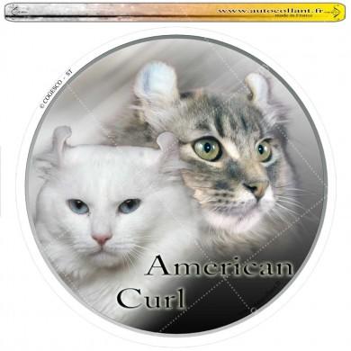 Autocollant american curl circulaire