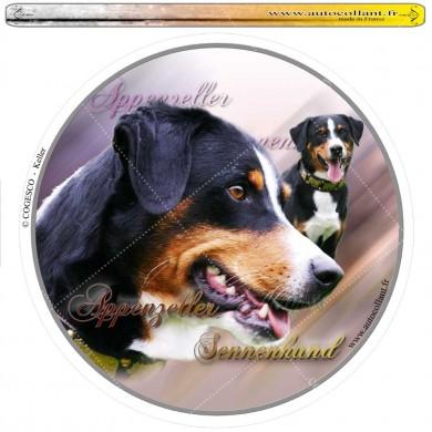 Autocollant appenzeller sennenhund circulaire