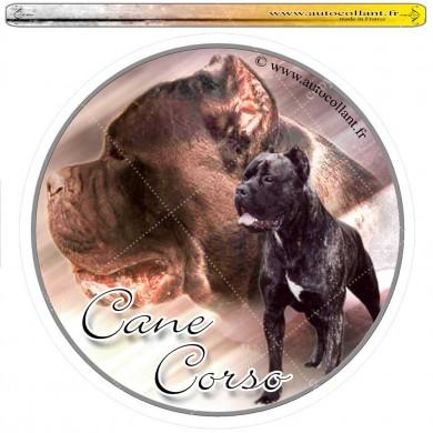 Autocollant cane corso 01 circulaire