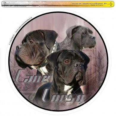 Autocollant cane corso male circulaire