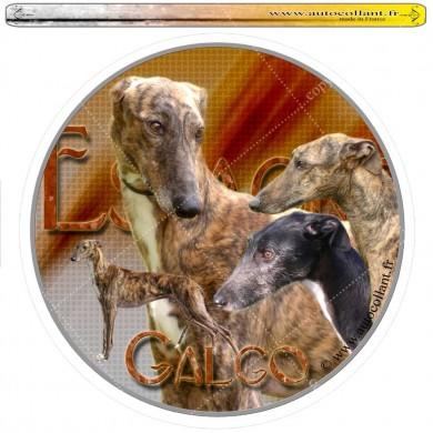 Autocollant galgo espagnol circulaire