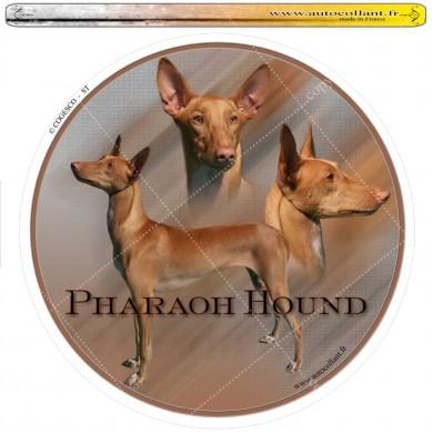 Autocollant pharaoh hound circulaire