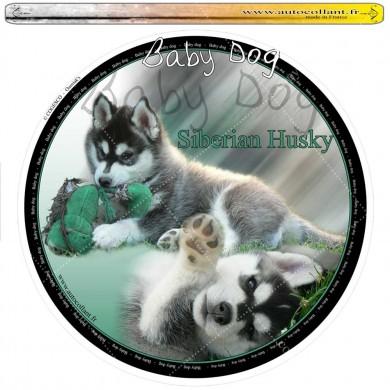 Autocollant siberian husky baby dog circulaire