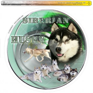 Autocollant siberian husky circulaire