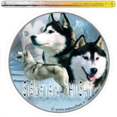 Autocollant siberian husky oumiaks circulaire