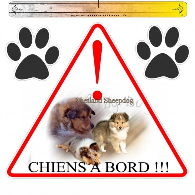 Autocollant voiture  shetland sheepdog baby dog  en triangle