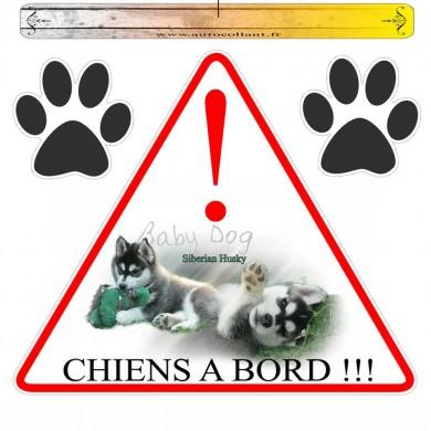 Autocollant voiture siberian husky baby dog en triangle
