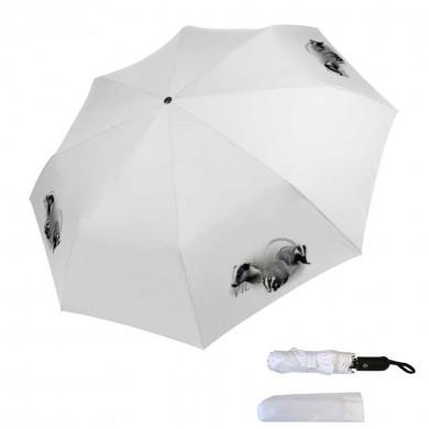 Parapluie pliable blaireau
