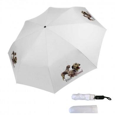 Parapluie pliable irish wolfhound