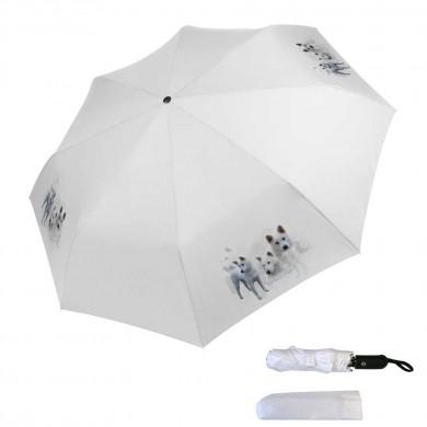 Parapluie pliable kishu
