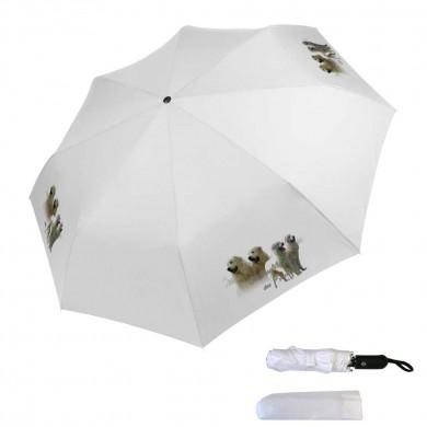 Parapluie pliable montagne des pyrenee