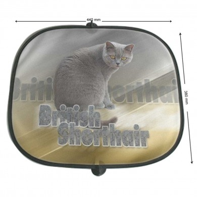 Pare soleil Chat british shortair gris