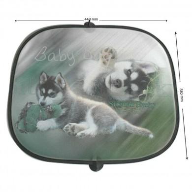 Pare soleil Chien siberian husky baby dog