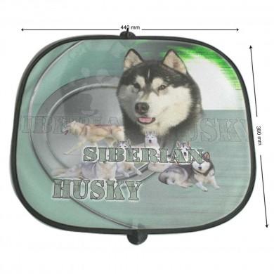 Pare soleil Chien siberian husky