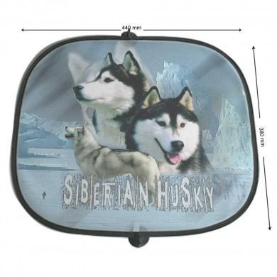 Pare soleil Chien siberian husky oumiaks
