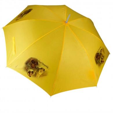 Parapluie Chien  shetland sheepdog baby dog