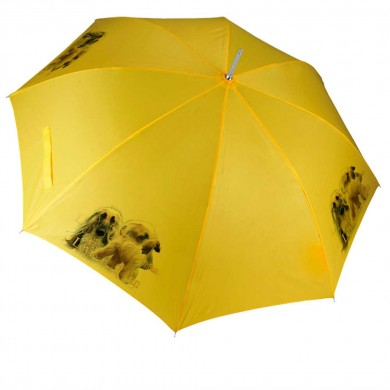 Parapluie Chien afghane blond