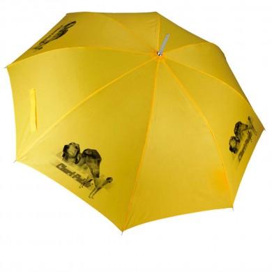Parapluie Chien chart polski poil long