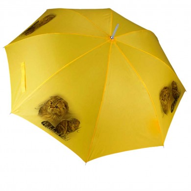 Parapluie Chat highland fold
