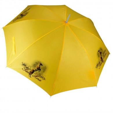 Parapluie Cheval paint horse