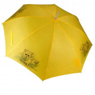 Parapluie Chat persan exotic