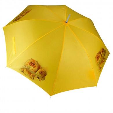 Parapluie Chat persans roux
