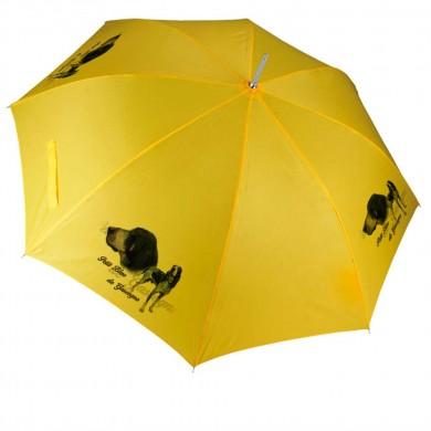 Parapluie Chien petit bleu de gascogne
