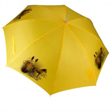 Parapluie Cheval quater horse