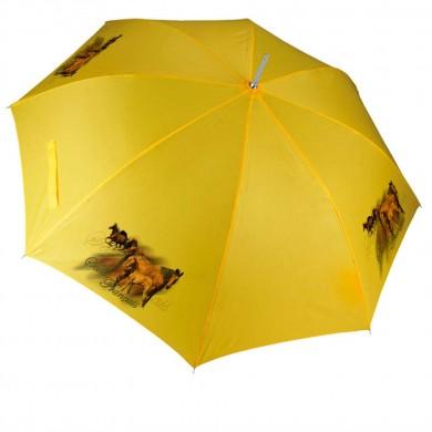 Parapluie Cheval selle francais poulain